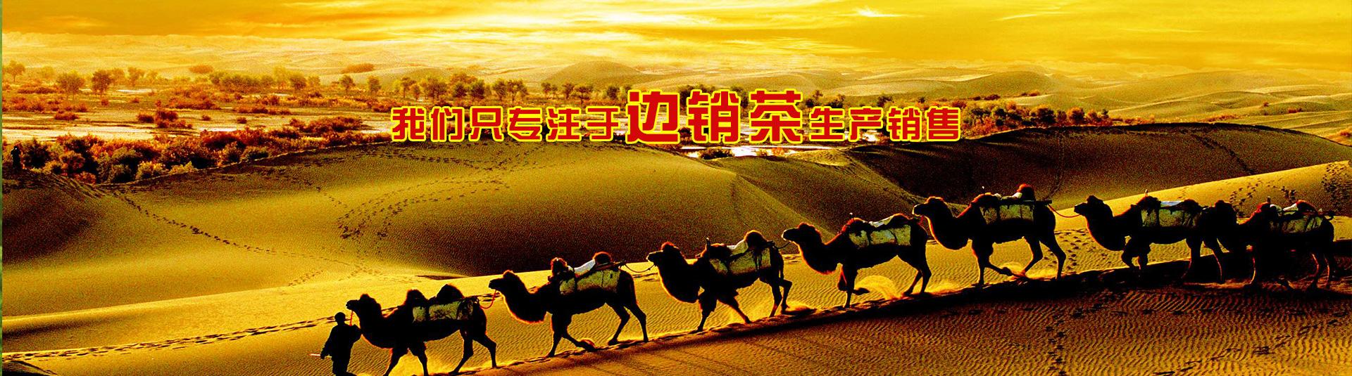 湖北茯砖茶生产厂家_湖北万和农业发展有限公司