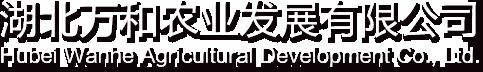 湖北茯砖茶生产厂家